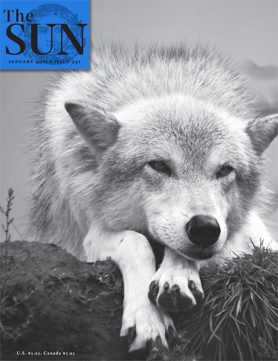 issue 541 cover