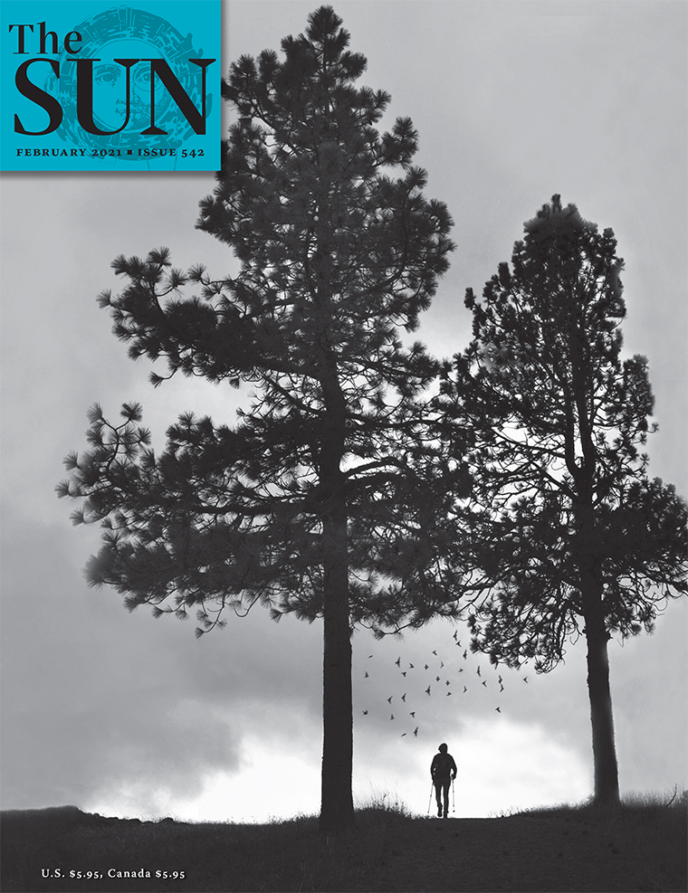issue 542 cover