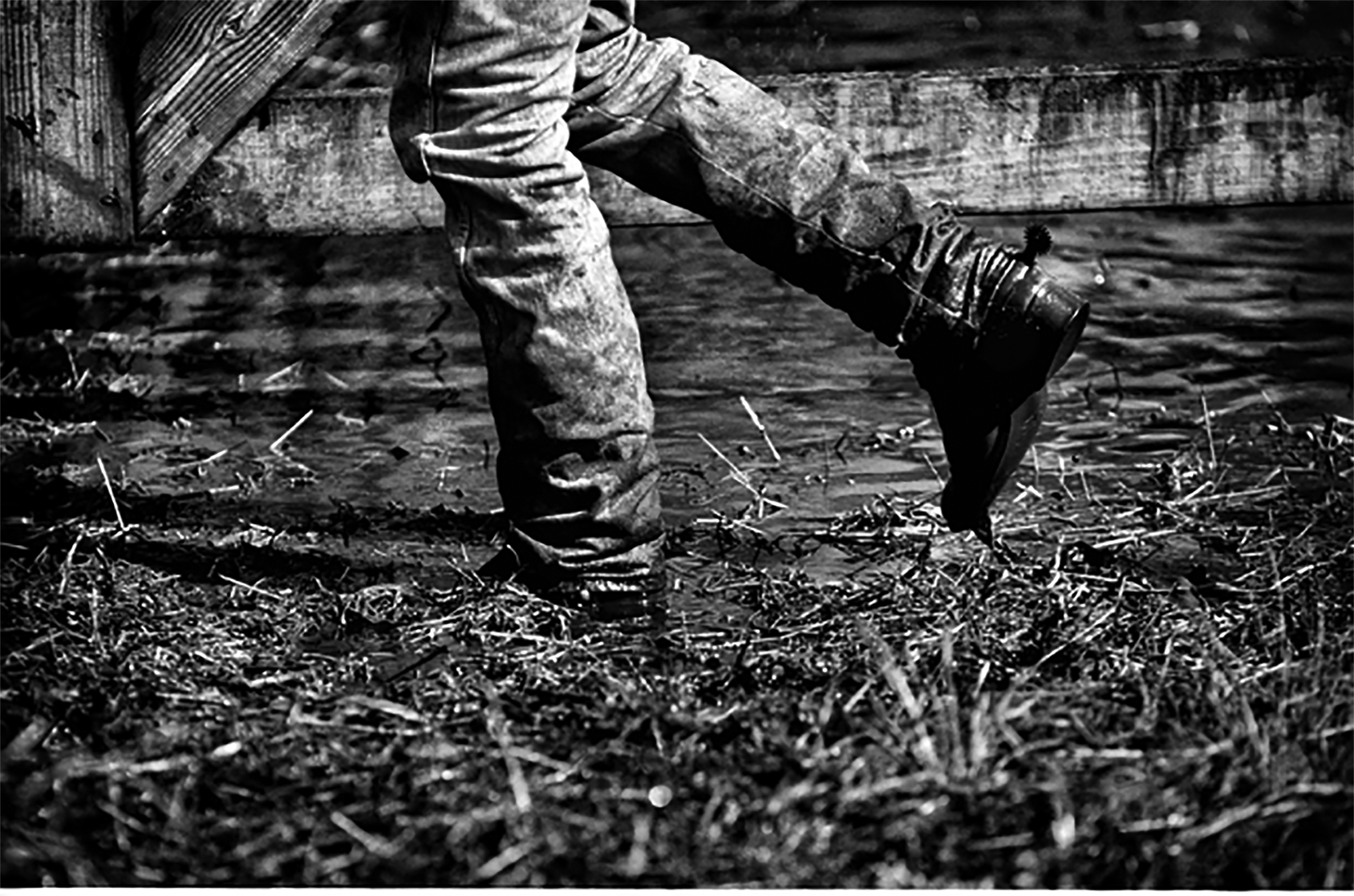 The leg's of a person in jeans and boots walking along the ground strewn with hay