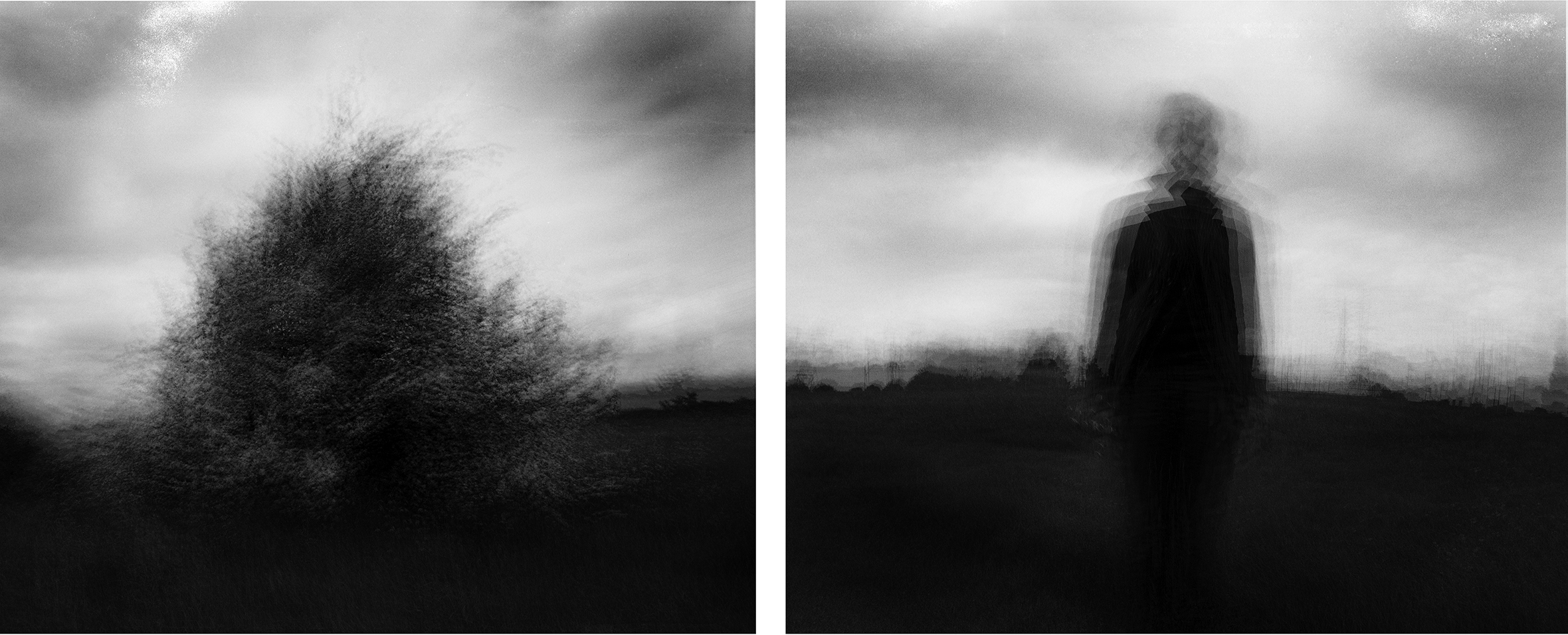 A set of blurred photos. The left photo displays a blurred bush. The right photo appears to continue from the left and displays a blurred silhouette of a person walking off.