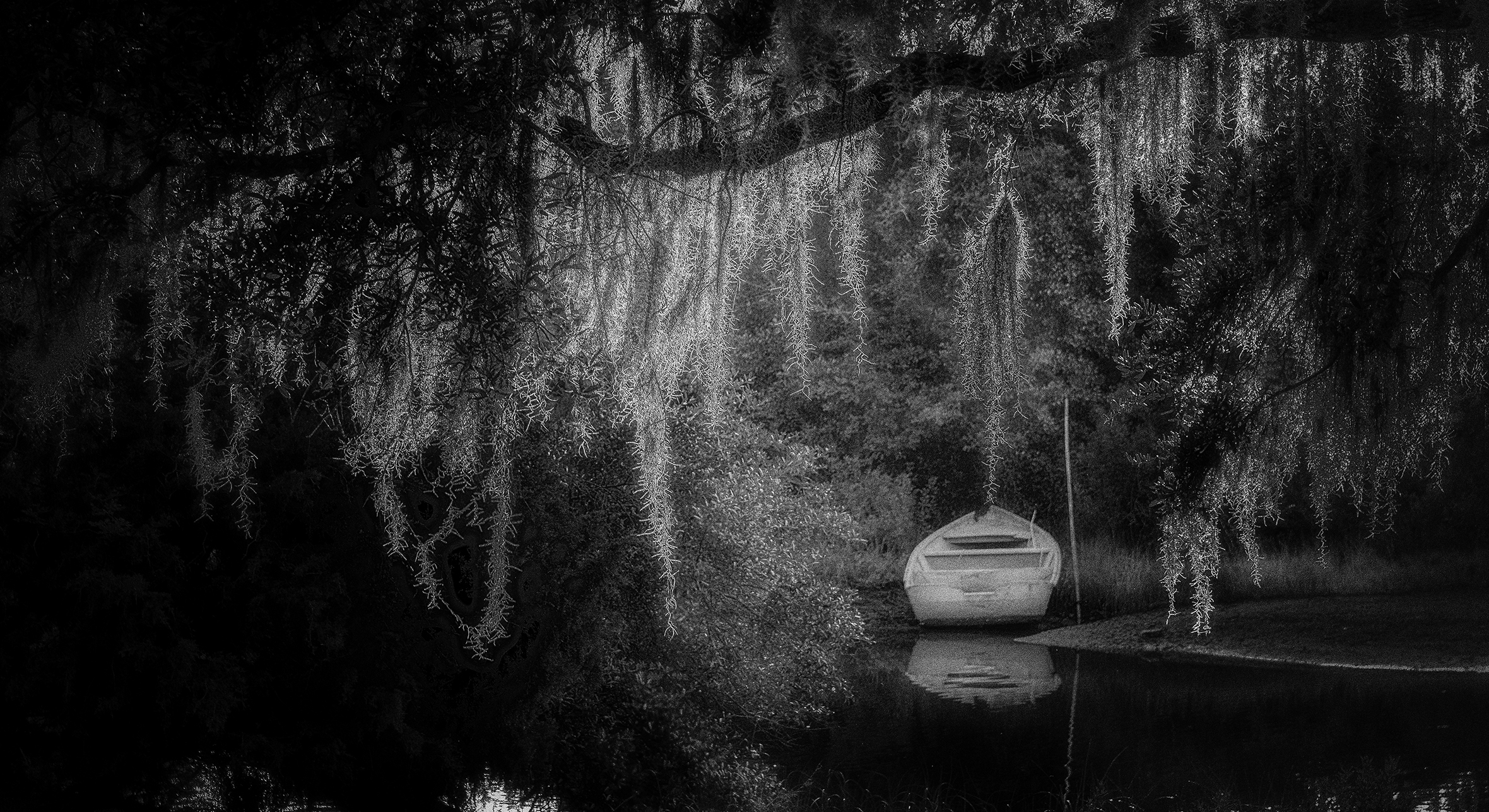 A boat in the water framed by the branches and leaves of a willow tree.